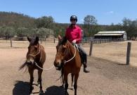 Anne van Zeeuw Werken met paarden in Australië